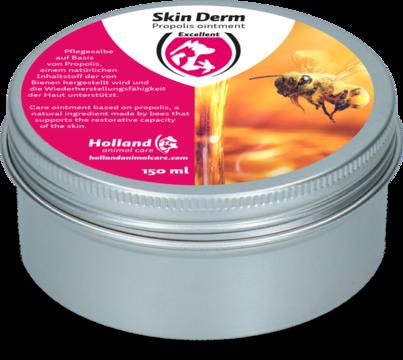Skin Derm Propolis Zalf DE/EN